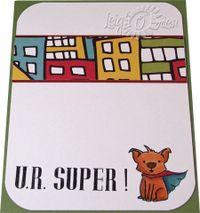 Super Little Boy_inside