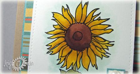 Sunflower CU