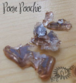 Poor_poochie_2